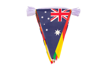 WC 2018 Pennant Bunting 8x12""