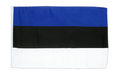 Estonia - 12x18 in Flag