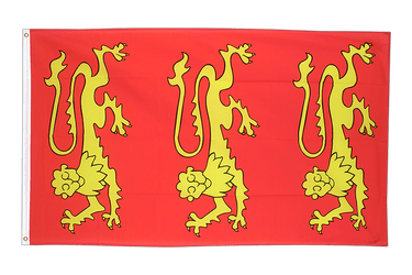 King Richard I of England 1189 3x5 ft Flag