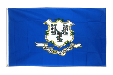 Connecticut 3x5 ft Flag