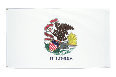 Illinois 3x5 ft Flag