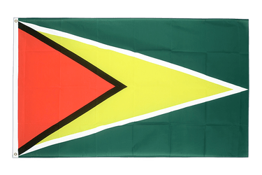 Guyana - 2x3 ft Flag