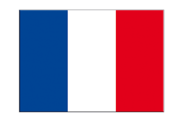 "France Flag Sticker 3x4"", 5 pcs"