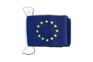 European Union EU Flag Bunting 6x9""