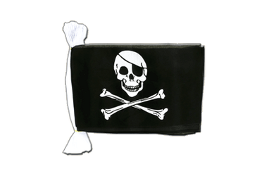 Pirate Skull and Bones Flag Bunting 6x9""