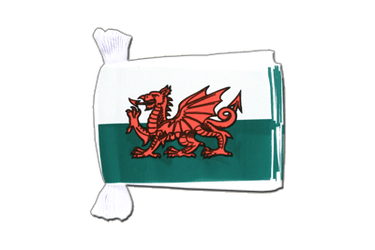 "Wales Flag Bunting 6x9"", 9 m"