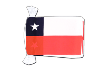 "Chile Flag Bunting 6x9"", 9 m"