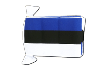 "Estonia Flag Bunting 6x9"", 9 m"