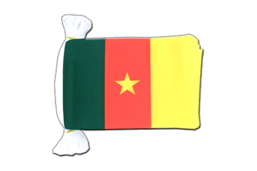 "Cameroon Flag Bunting 6x9"", 9 m"