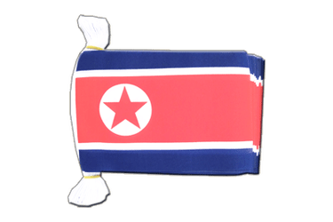 "North corea Flag Bunting 6x9"", 9 m"