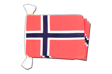 "Norway Flag Bunting 6x9"", 9 m"