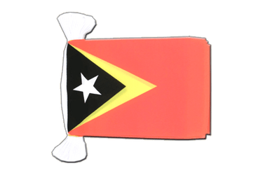 East Timor - Flag Bunting 6x9""