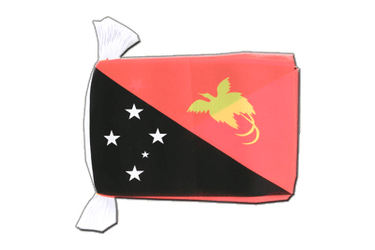 "Papua New Guinea Flag Bunting 6x9"", 9 m"