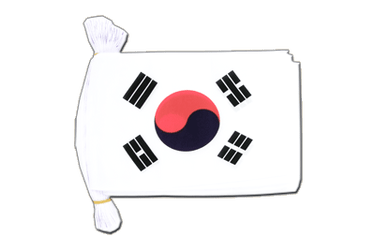 "South Korea Flag Bunting 6x9"", 9 m"