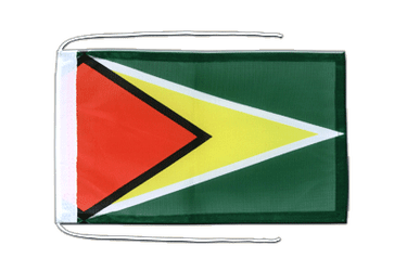 Guyana Flag with ropes 8x12""