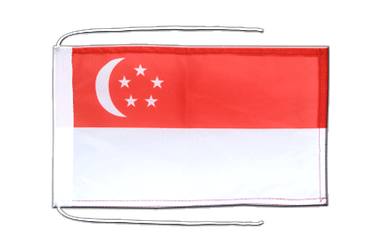 Singapore - Flag with ropes 8x12""