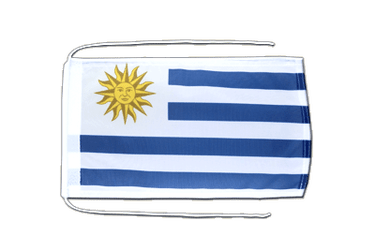 Uruguay Flag with ropes 8x12""