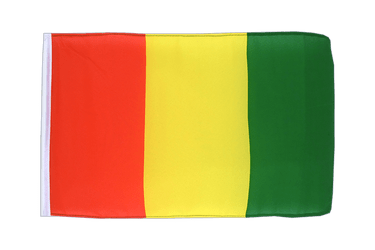 Guinea 12x18 in Flag