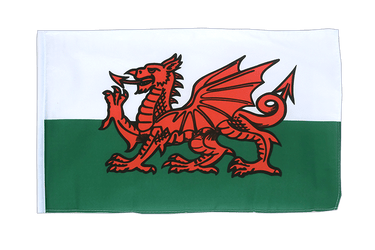 Wales 12x18 in Flag