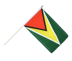 Guyana Hand Waving Flag 12x18""