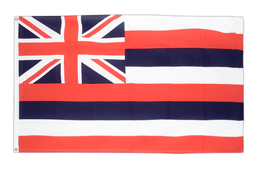 Hawaii 2x3 ft Flag