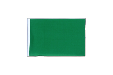 Green Mini Flag 4x6""