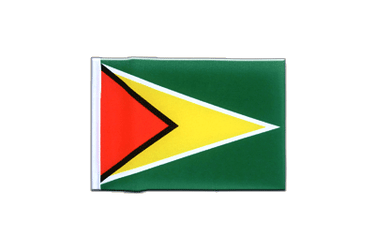 Guyana Mini Flag 4x6""