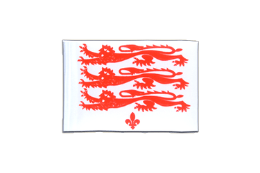 Dorset civil Mini Flag 4x6""