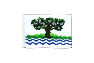 Worcestershire Mini Flag 4x6""