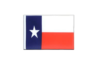 Texas Mini Flag 4x6""