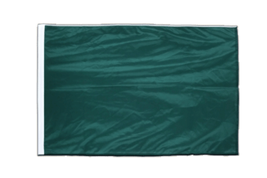 Green Sleeved Flag PRO 2x3 ft