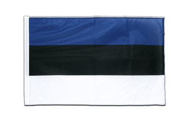 Estonia - Sleeved Flag PRO 2x3 ft