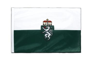 Styria Sleeved Flag PRO 2x3 ft