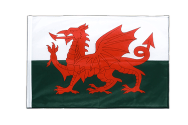 Wales Sleeved Flag PRO 2x3 ft