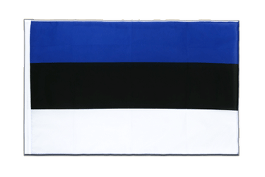 Estonia Sleeved Flag ECO 2x3 ft