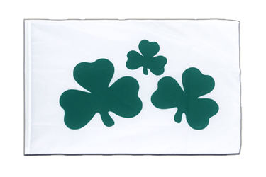 Shamrock Sleeved Flag ECO 2x3 ft