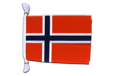 "Norway Flag Bunting 6x9"", 3 m"