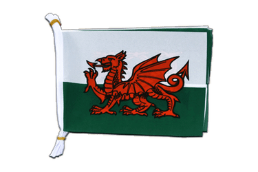 "Wales Flag Bunting 6x9"", 3 m"