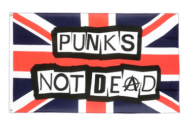 Punks Not Dead 2x3 ft Flag