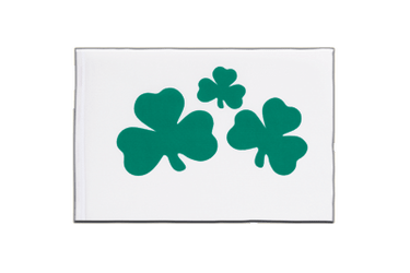 Shamrock Little Flag 6x9""