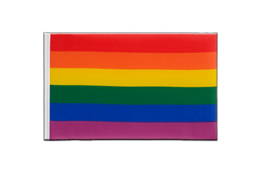 Rainbow Little Flag 6x9""