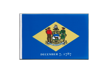 Delaware Little Flag 6x9""