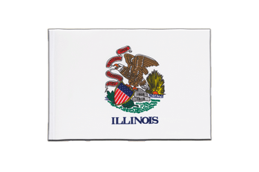 Illinois - Little Flag 6x9""