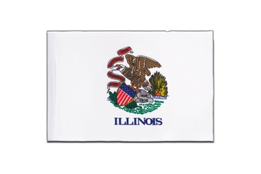 Illinois Satin Flag 6x9""