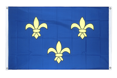 Île-de-France - Banner Flag 3x5 ft, landscape