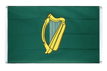 Leinster Banner Flag 3x5 ft, landscape