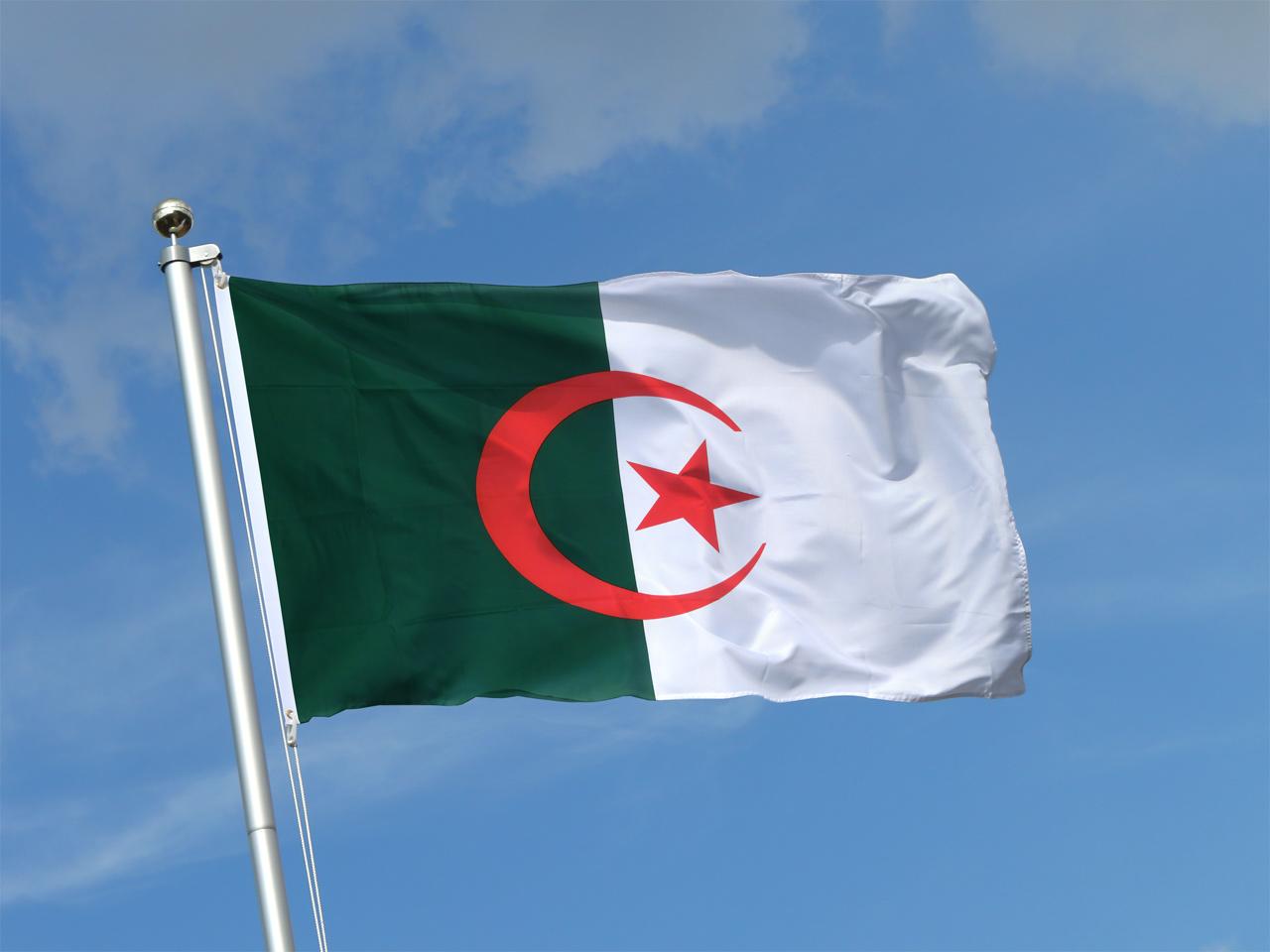 """Résultat de recherche d'images pour """"drapeau algérie"""""""
