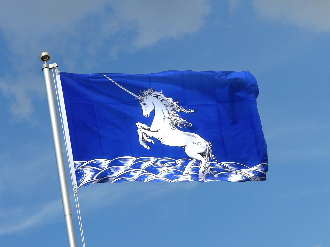 Buy Unicorn blue Flag - 3x5 ft (90x150 cm) - Royal-Flags