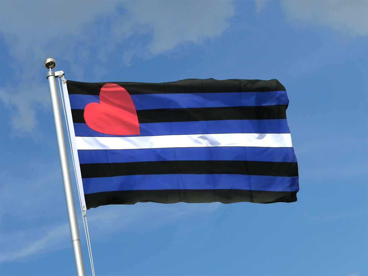 152 x 91 cm Gay Pride B/är-Flagge