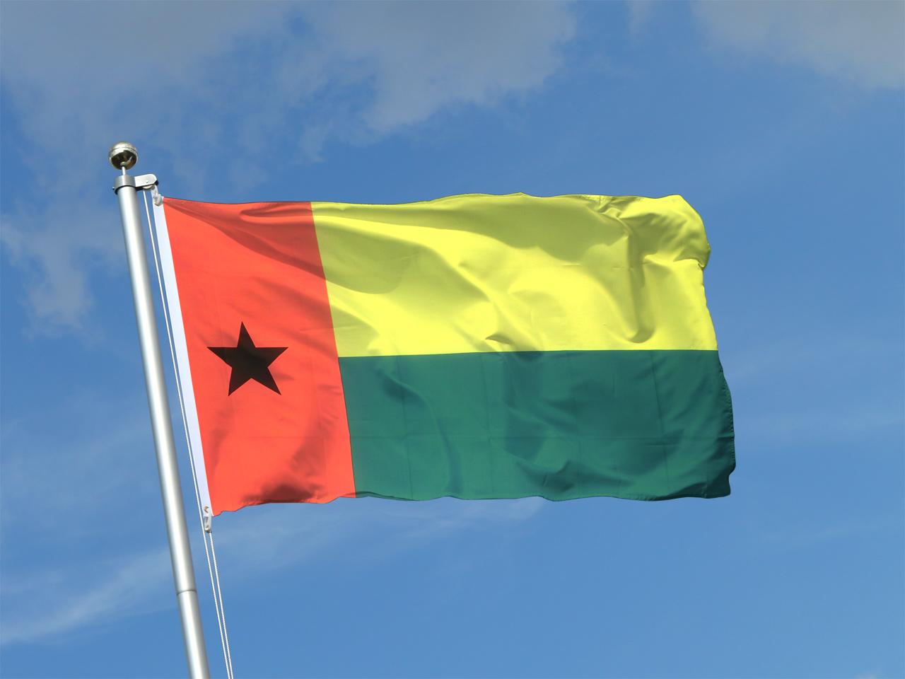 достопримечательности гвинеи фото флаг худшая